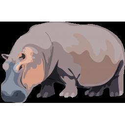 Sticker Hippopotame couleur