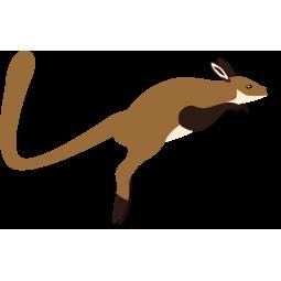 Sticker Wallaby sauteur