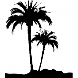 Sticker Palmiers dans le...