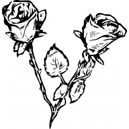 Sticker Dessin de deux roses