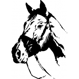 Sticker portrait de cheval