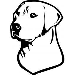 Sticker fluo Labrador