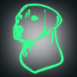 Sticker phospho Labrador
