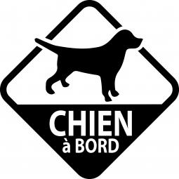 Sticker fluo Chien à bord...
