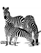 Stickers Zèbres - déco design et animale - Mon Sticker Déco
