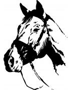 Stickers Équitation - déco sport cheval - Mon Sticker Déco